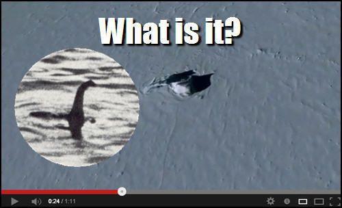 Le monstre du Loch Ness découvert en Antarctique ? 1663820812_1367250302
