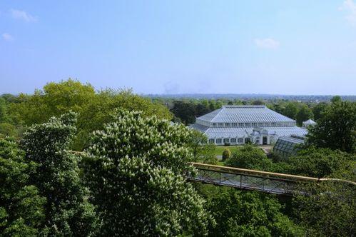 Londres Kew_Gardens4