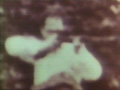 l' assassinat  de Kennedy . Photo  de  l' un des tireurs TIREUR-PALISSADE-NET