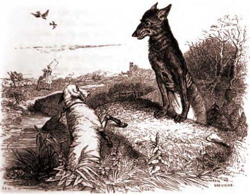 Le loup et l'agneau - Jean de La Fontaine Bxl1hc5o