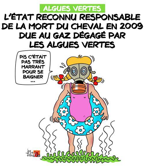 A RIRE OU EN PLEURER OU REVUE DE PRESSE SATIRIQUE - Page 13 Algues-vertes-jm