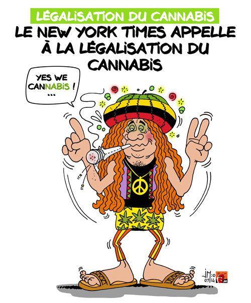 A RIRE OU EN PLEURER OU REVUE DE PRESSE SATIRIQUE - Page 13 Cannabis-legal-jm