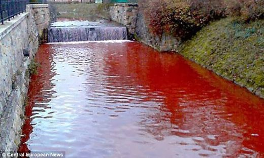Du jour au lendemain une rivière devient rouge sang en Slovaquie Article_2517516_19CE2481000005