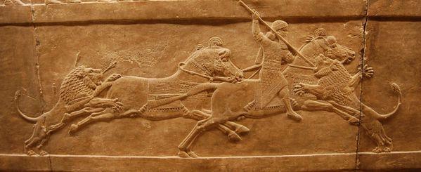 TURQUIE : Economie, politique, diplomatie... - Page 22 Ninive-nineveh-chasse-au-lion-palais-d-assurbanipal--4-