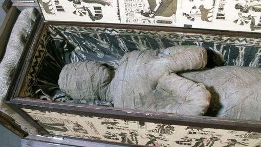 Un enfant découvre une momie égyptienne dans le grenier de sa grand-mère Media_xll_6036184