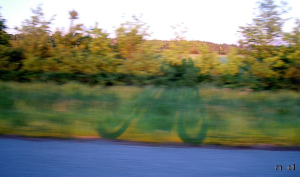 Balade route et piste au Pays de Sault 102DSCN9021rcredL