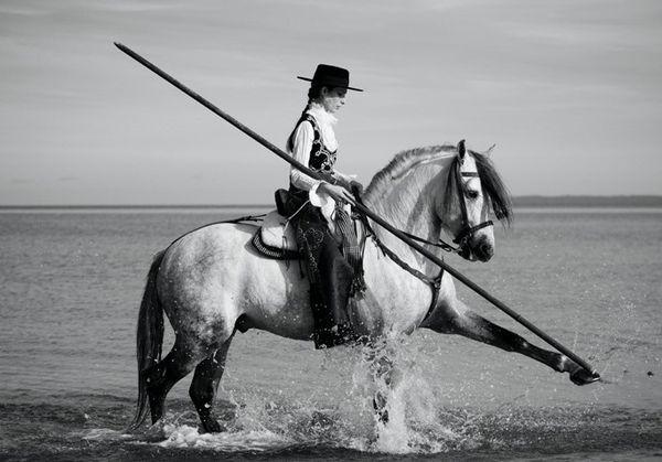 les chevaux.. - Page 4 Cheval-quintero-jambette-eau