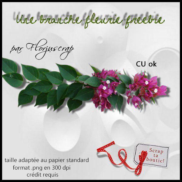 """et le freebie du pack """" branche fleurie """" Preview-CU-branche-fleurie-freebie-par-Florjuscrap"""