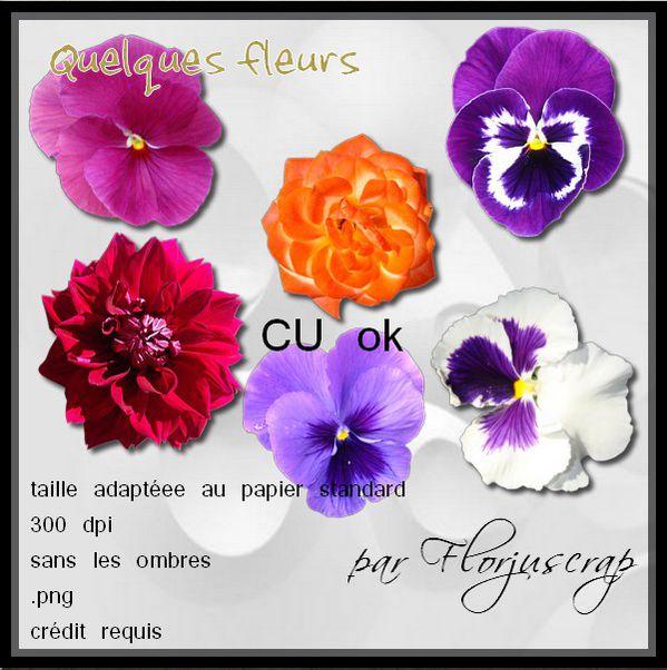 En attendant voila un autre CU naturelle, des fleurs ... Aper-u-fleurs-par-Florjuscrap
