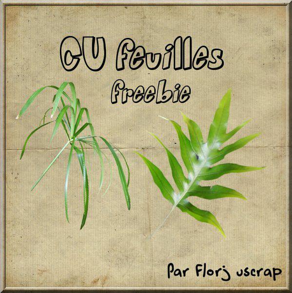 Pack de 2 feuilles en CU Preview-Cu-feuille