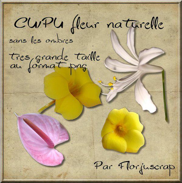 CU fleur naturelle Preview-copie-5