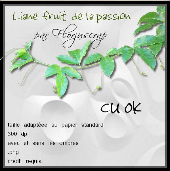 liane naturelle en CU Preview-liane-par-Florjuscrap