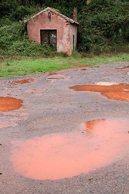 Sri Lanka: Une étrange pluie rouge s'abat sur le pays Red-rain