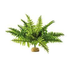 40K_Atelier décors en vue d'une nouvelle table Jungle Plante-plastique-exoterra-fougere-de-boston-f-292-29281