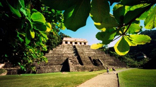 LES MAYAS RESPONSABLES DE LEUR DISPARITION ? 120224_my066_mayas-temple-general_sn635