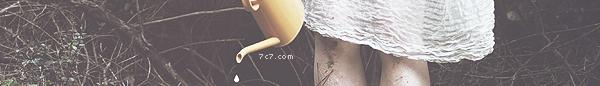 ماسنجر خلفيات 219476