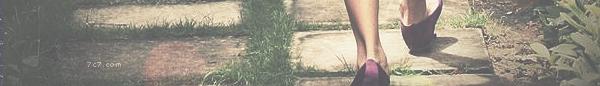ماسنجر خلفيات 219478