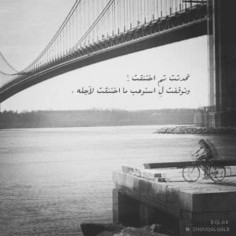 سيوفي العراقي - صفحة 2 340588