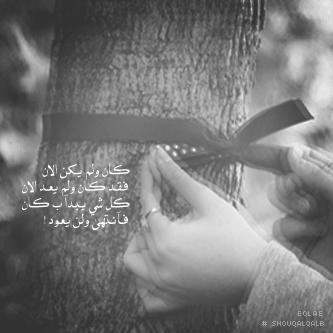سيوفي العراقي - صفحة 2 340590