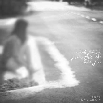 سيوفي العراقي - صفحة 2 340591