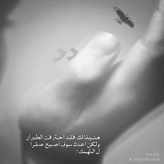 سيوفي العراقي - صفحة 2 340595