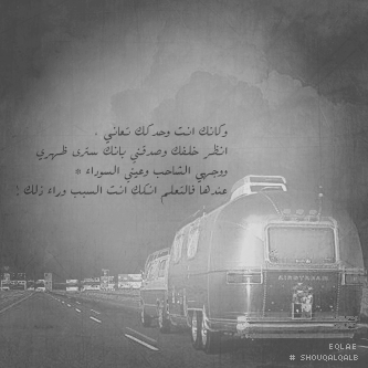 سيوفي العراقي - صفحة 2 340603