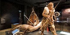 Лучший европейский музей 2011 года находится в Бельгии Gall_240x120