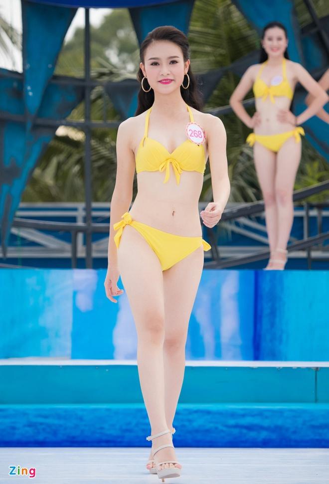 (TỒNG HỢP) Những ứng viên sáng giá cho vương miện Hoa hậu Việt Nam 2016 Phung_bao_ngoc_van_zing
