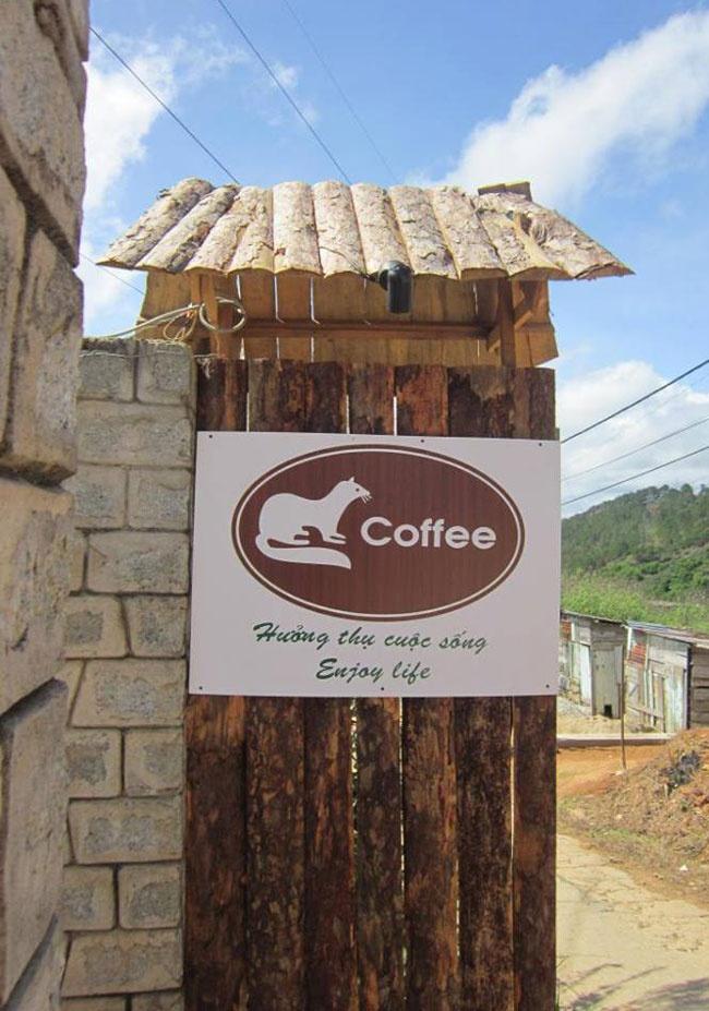Trang trại cà phê chồn tại Đà Lạt Cf