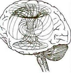 Взгляд современной науки: Существует ли душа, и бессмертно ли Сознание? Скалярная волна. Gehirnbeiscalar