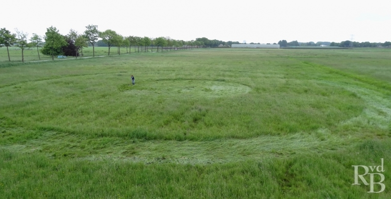 Crop Circles 2014.  - Page 5 Pays-bas-06f-4588f51