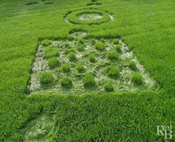 Crop Circles 2014.  Pays-bas-03b-44f044b