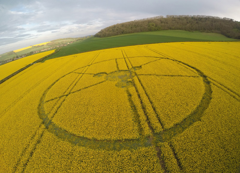 Crop Circles 2014.  - Page 3 Gb1054-4563bf6