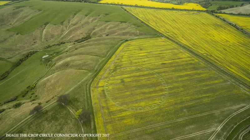 Crop Circles 2017.   Gb1182-521ed39
