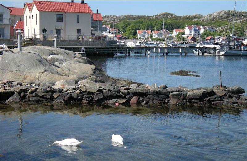 Virée en Suède - Page 2 Dscn6654-small-4c0836a