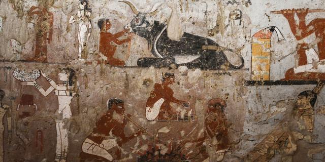 VIDEO - Egypte : la tombe d'une prêtresse du temps des pharaons découverte 000_yo1n9-55f281c