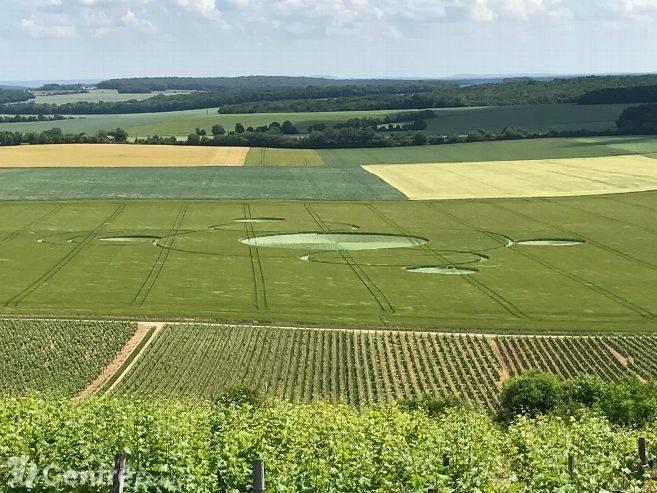 Crop Circles 2017.   Fr-5264392