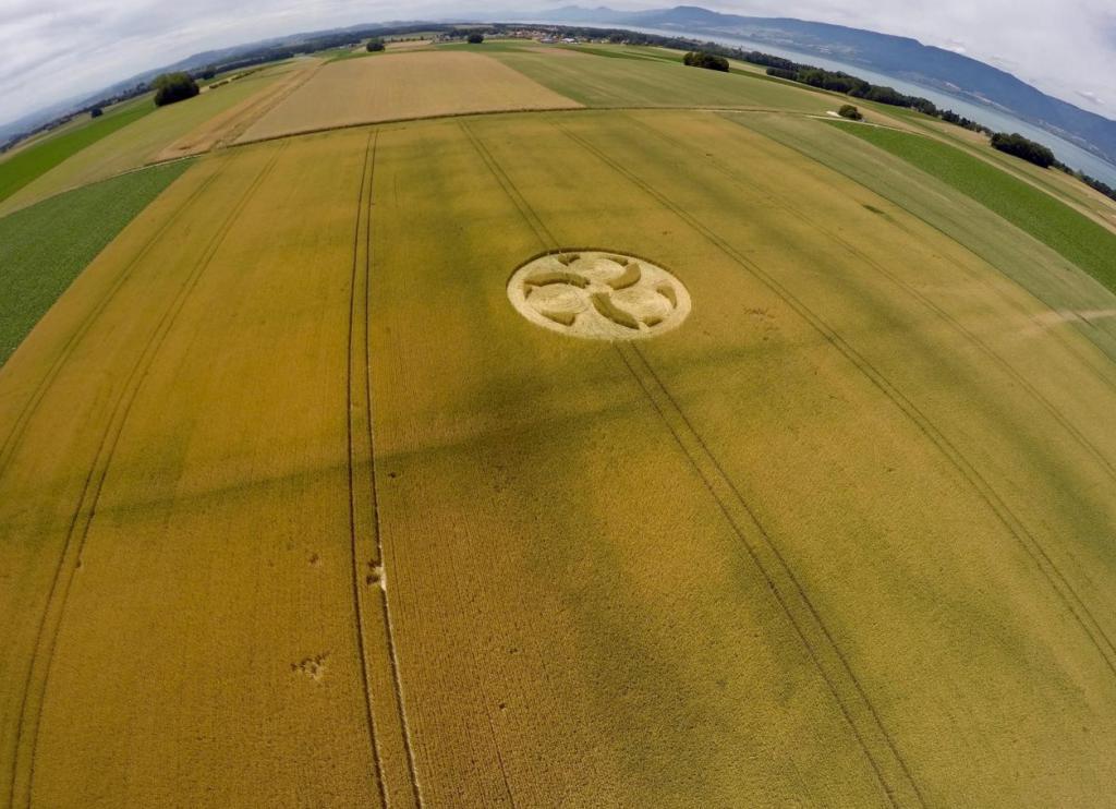 Crop Circles 2017.   Suisse-01-528f136