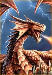 Dossier de Daire Orlaigh Dragons-fury-by-anne-stokes-53b5620
