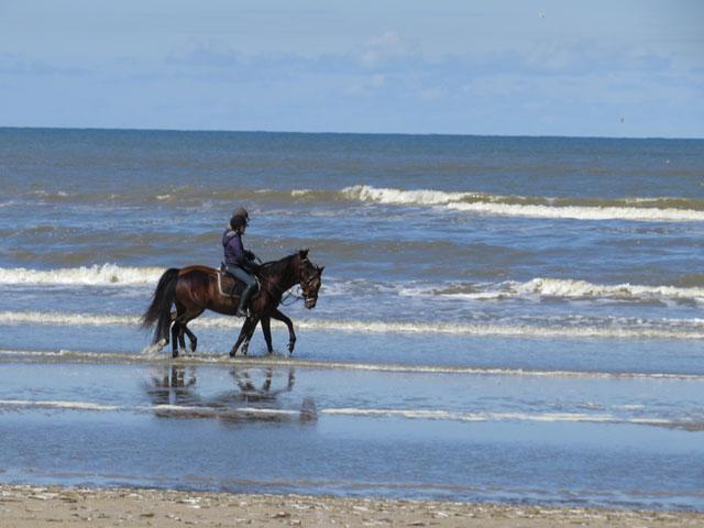 Petit tour au Benelux (2/3) 18-plage-4b63545