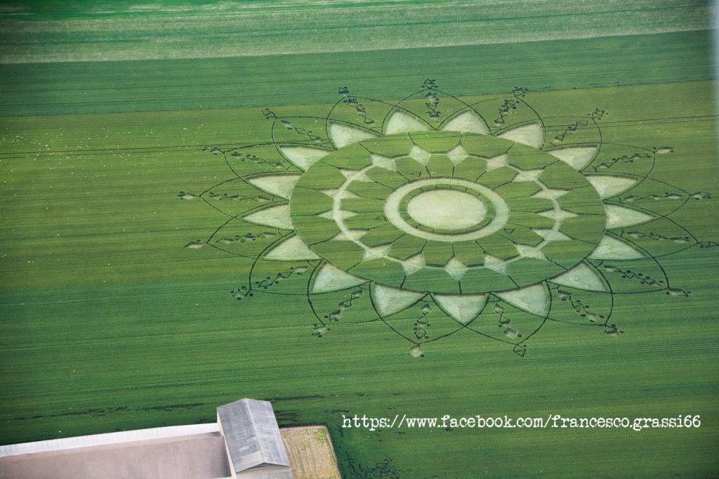 Crop Circles 2017.   Italie-01b-525ee6d