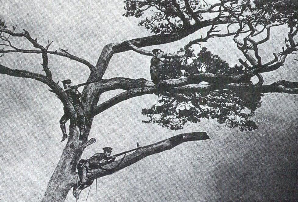 Tsing Tao, 1914. 001-fe3db7