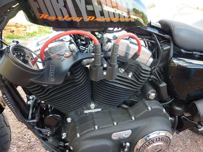 Harley Davidson Sporster 1200 Forty Eight avec quelques modifs ... P1030589-3f1e6f8
