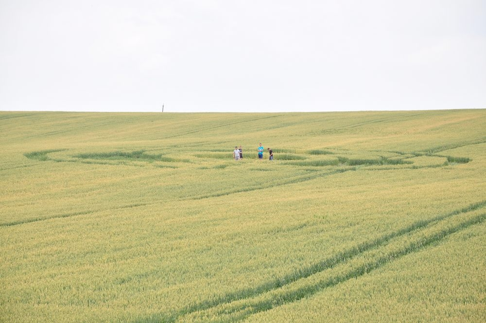 Crop Circles 2013. - Page 2 Russie-03-3f60adb