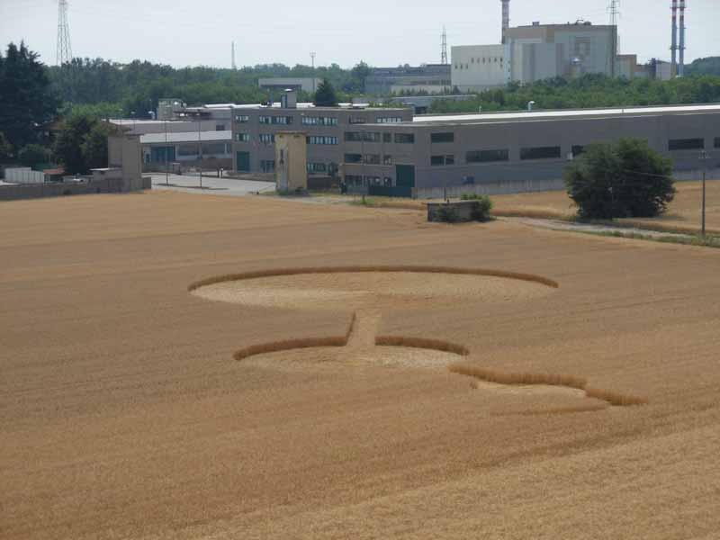 Crop Circles 2013. - Page 3 Italie-10d-3f82361