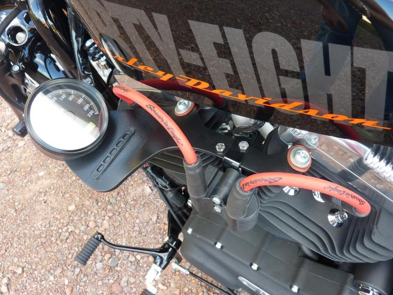Harley Davidson Sporster 1200 Forty Eight avec quelques modifs ... P1030599-3f1e787