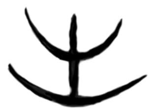Étranges traces circulaires cutanées.  Signe-34a-416a91f