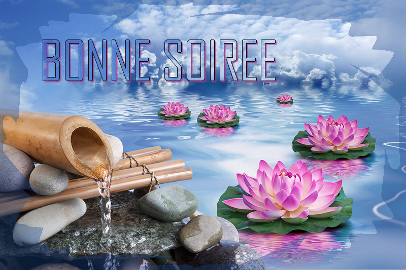 Pour se dire bonsoir - Page 6 Bonne-soiree-zen-nenuphares-42b47e3