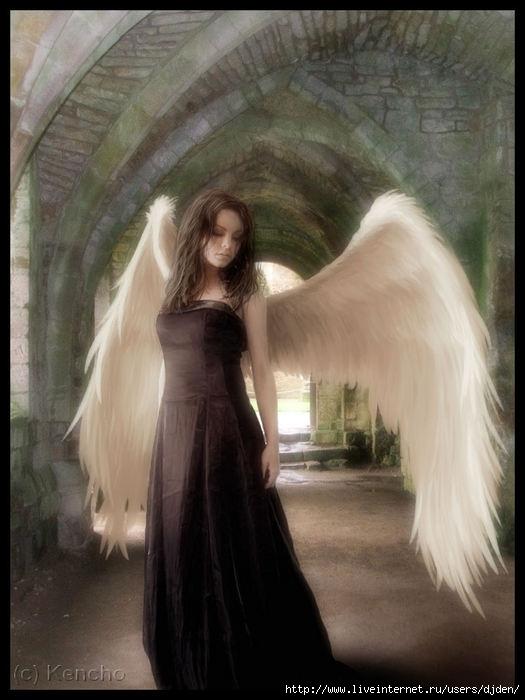 ♥.!●•• ╝◄◄بكاء القمر...!!!►►╚ ♥.!●• 1362904_25942374_5028448_2789300_Wandering_Angel_by_Kencho