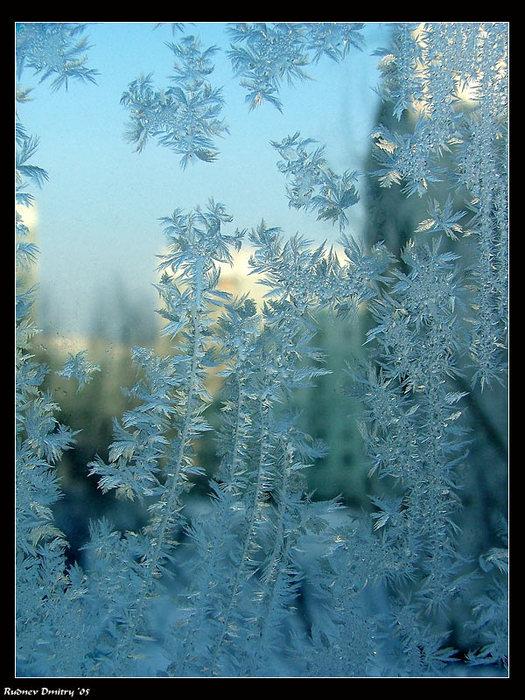 А за окном зима... - Страница 2 36482996_1228908650_744826